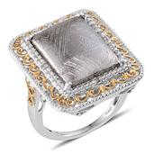 Marvelous Meteorites, Diamond 14K YG and Platinum Over Sterling Silver Ring (Size 9.0) TDiaWt 0.04 cts, TGW 20.290 cts.