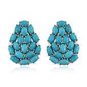 Arizona Sleeping Beauty Turquoise Platinum Over Sterling Silver Earrings TGW 14.400 cts.